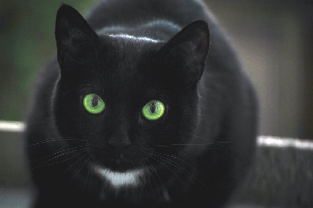 10 Of The Strangest Superstitions From Around The World