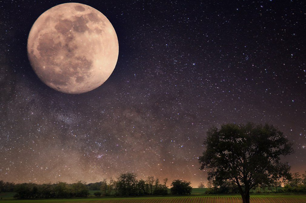 10 Facts You Never Knew About The Moon
