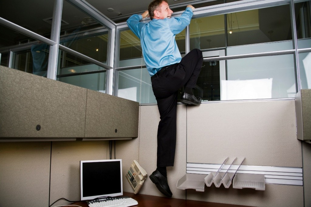 20 Bizarre Reasons People Have Quit Their Job