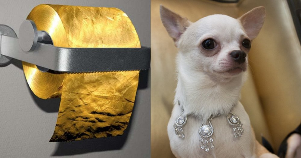 10 Of The Most Expensive And Completely Useless Items In The World
