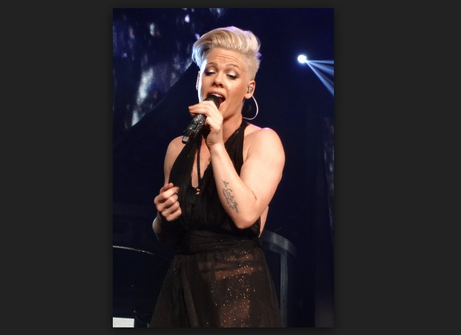 Pink Respond To Twitter Haters About Her Weight – In The Best Way Possible